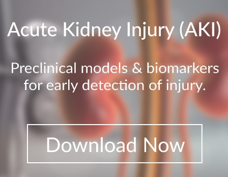Download biomarkers and preclinical models for acute kidney injury (AKI) acute renal failure (AFR)