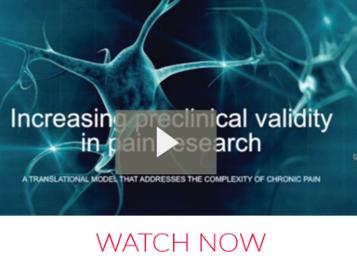 Webinar: Pig model of Neuropathic Pain