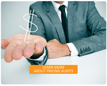 Competitive Pricing Audits