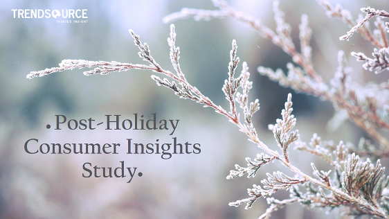 Download 2015 Post-Holiday Consumer Insights Study