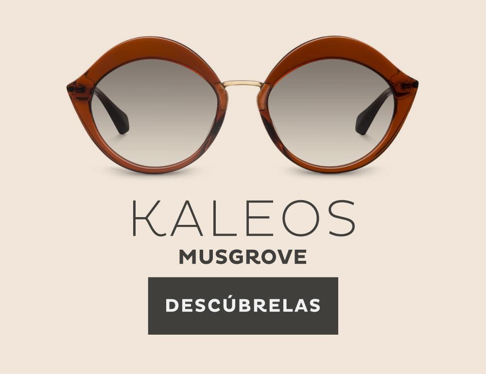 Gafas de sol Kaleos en Opticalia Callao