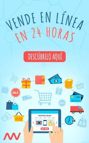 Vende en línea en 24 horas