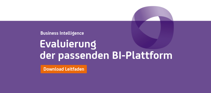 Leitfaden Evaluierung BI-Plattform