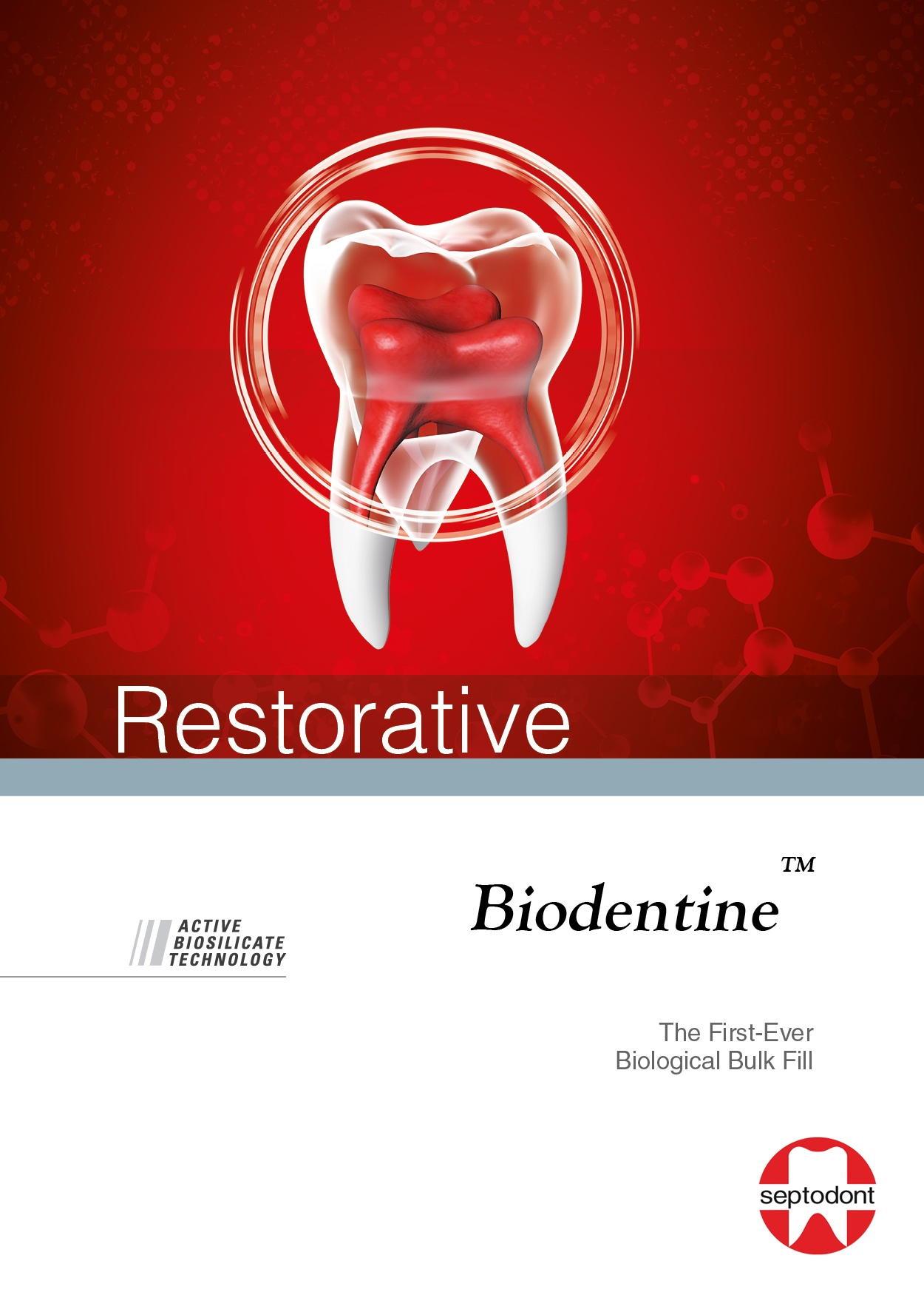 Biodentine Restorative Brochure