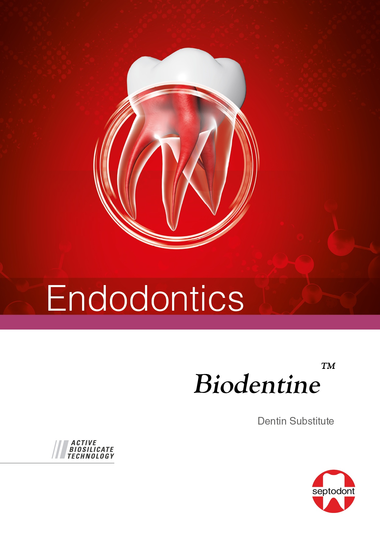 Biodentine Endodontics Brochure
