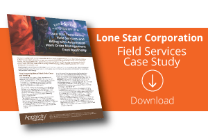 Download Lone Star Case Study