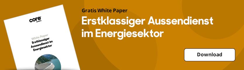 White Paper Erstklassiger Aussendienst im Energiesektor