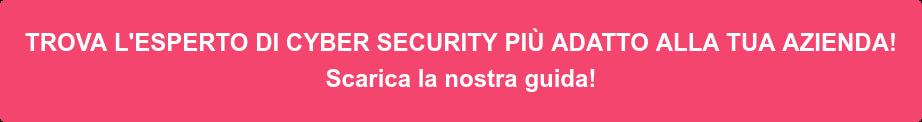 TROVA L'ESPERTO DI CYBER SECURITY PIÙ ADATTO ALLA TUA AZIENDA! Scarica la nostra guida!