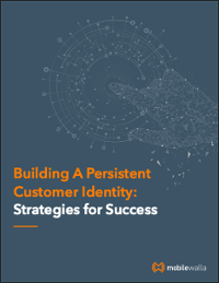 Building a Persistent Customer Identity: Strategies for Success
