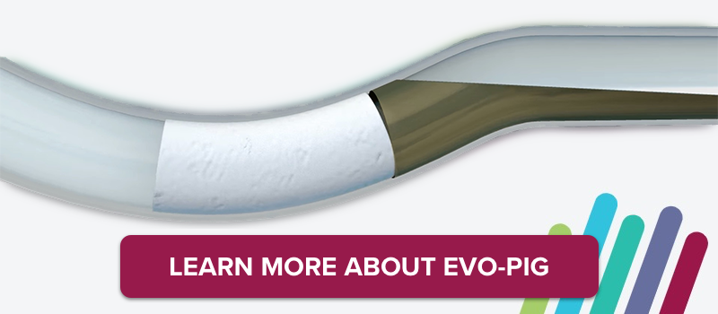 Learn more about Evo-pig