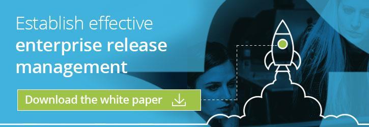 Enterprise Release Management Function