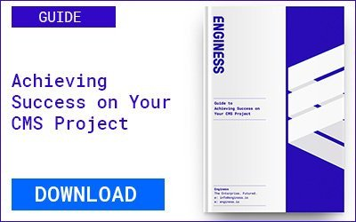 Guide: Achieving Success On Your CMS Project