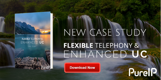 Flexible Telephony & Enhanced UC