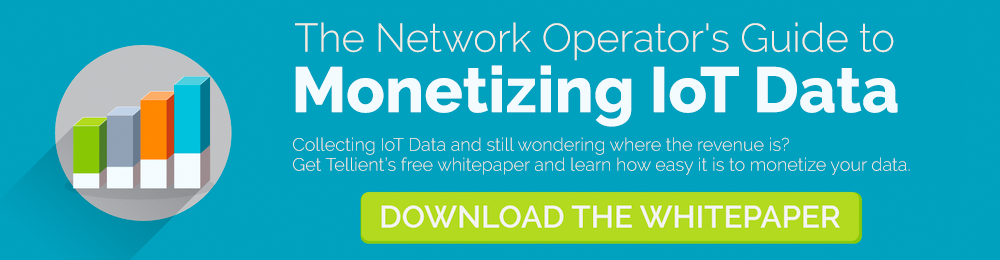 Download the Free Whitepaper: The Network Operator's Guide to Monetizing IoT Data