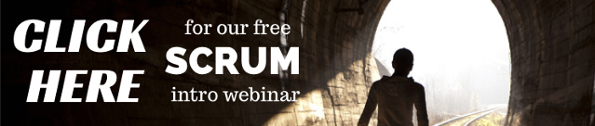 Scrum Intro webinar - The kingdom