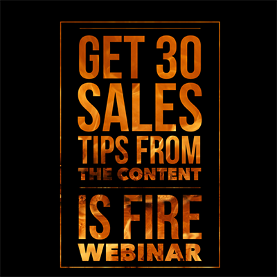 The Kingdom 30 Sales Tips Webinar