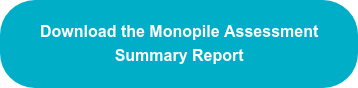 Download the Monopile Assessment Summary Report