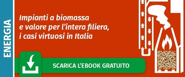 Scarica l'ebook:Impianti a biomassa e valore per l'intera filiera, i casi  virtuosi in Italia