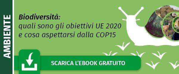 """Scarica l'ebook """"Comunicare un brand green: 3 iniziative di marketing per gli  animali a rischio di estinzione"""""""