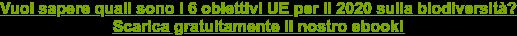 Vuoi sapere come comunicare le iniziative di sostenibilità ambientale della tua  azienda?Scarica gratuitamente il nostro ebook!