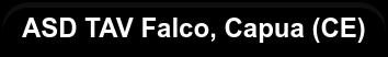 ASD TAV Falco, Capua (CE)