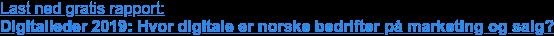 Last ned gratis rapport:  Digitalleder 2019:Hvor digitale er norske bedrifter på marketing og salg?