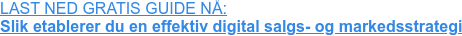 LAST NED GRATIS GUIDE NÅ:  Slik etablerer du en effektiv digital salgs- og markedsstrategi