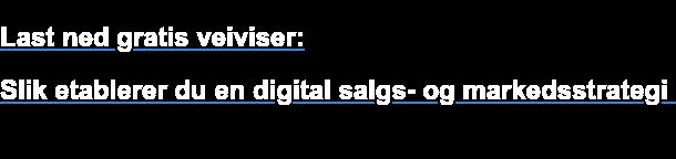 Last ned gratis veiviser:  Slik etablerer du en digital salgs- og markedsstrategi i 2018