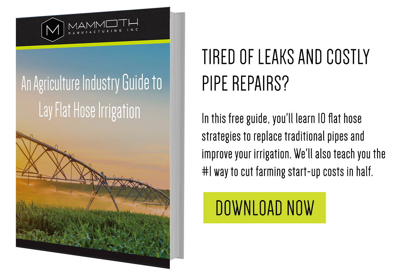 An Agriculture Industry Guide to Lay Flat Hose Irrigation