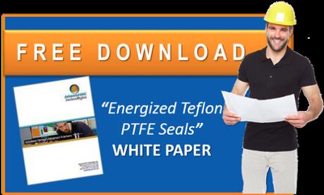 PTFE Energized Teflon Seals White Paper