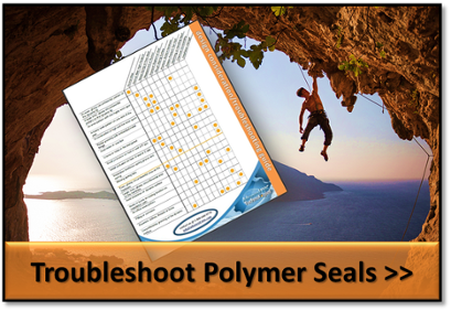 Polymer Seals Troubleshooting Guide