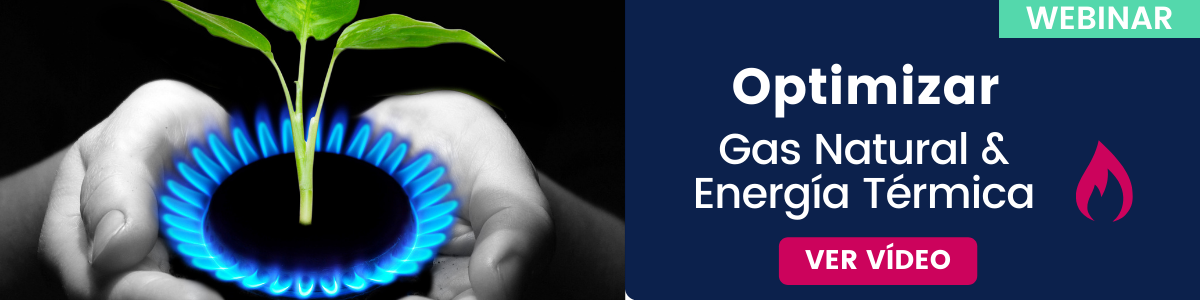 Webinar Gratuito: Gas Natural, Térmica y Combustible