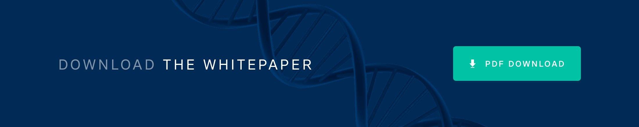 Download the Big Data Whitepaper