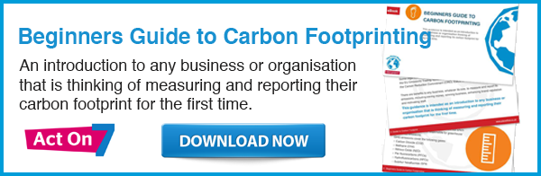 Click to download the Beginners Guide to Carbon Footprinting