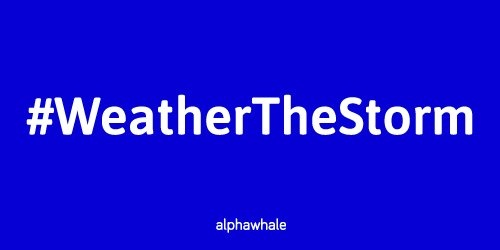 alphawhale-weather-the-storm