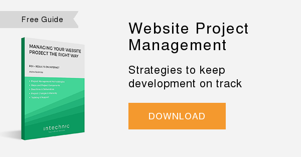 Free Whitepaper   Website Project Management  Strategies to keep development on track   DOWNLOAD