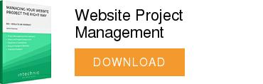 Website Project Management  DOWNLOAD