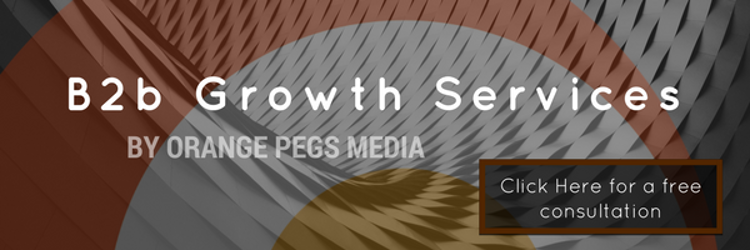 Business Growth Services consultation by Orange Pegs Media