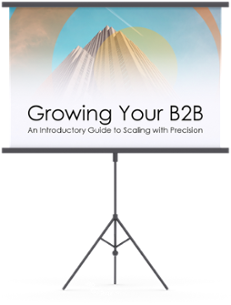grow your b2b business