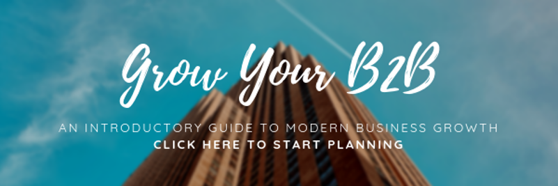 Grow your b2b business with this plan