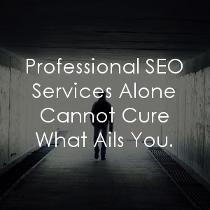 If you're looking into professional SEO services, you should read this before pulling any triggers!