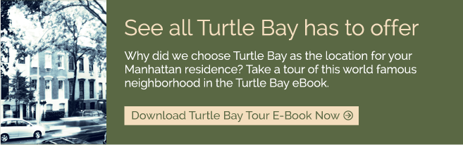Download Turtle Bay Tour E-Book