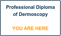 Professional Diploma of Dermoscopy      YOU ARE HERE
