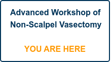 Advanced Workshop of Non-Scalpel Vasectomy      YOU ARE HERE