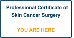 Professional Certificate of Skin Cancer Surgery    YOU ARE HERE