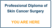 Professional Diploma of Skin Cancer Surgery    YOU ARE HERE