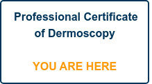 Professional Certificate of Dermoscopy     YOU ARE HERE