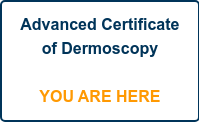 Advanced Certificate of Dermoscopy      YOU ARE HERE