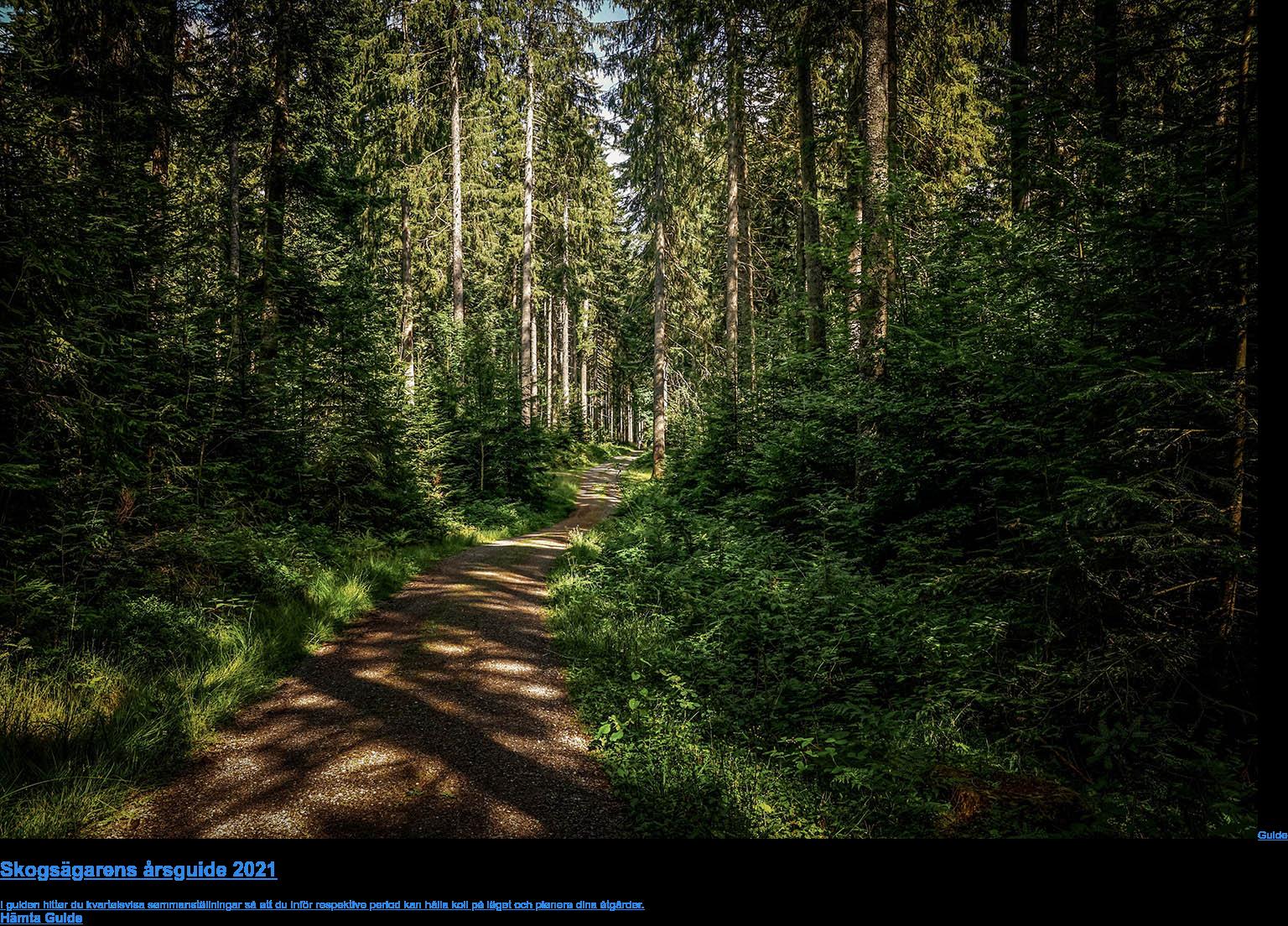 Guide  Skogsägarens årsguide 2021  I guiden hittar du kvartalsvisa sammanställningar så att du inför respektive  period kan hålla koll på läget och planera dina åtgärder. Hämta Guide