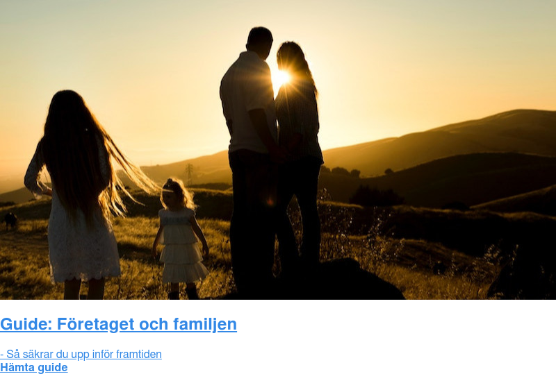 Guide: Företaget och familjen  - Så säkrar du upp inför framtiden Hämta guide